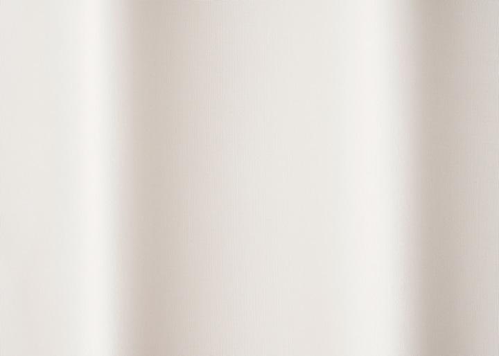 レースカーテン シャイン:画像40
