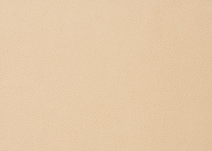 カオ・ダイニングチェア (ラタン) カバー (ソフトレザー):画像7