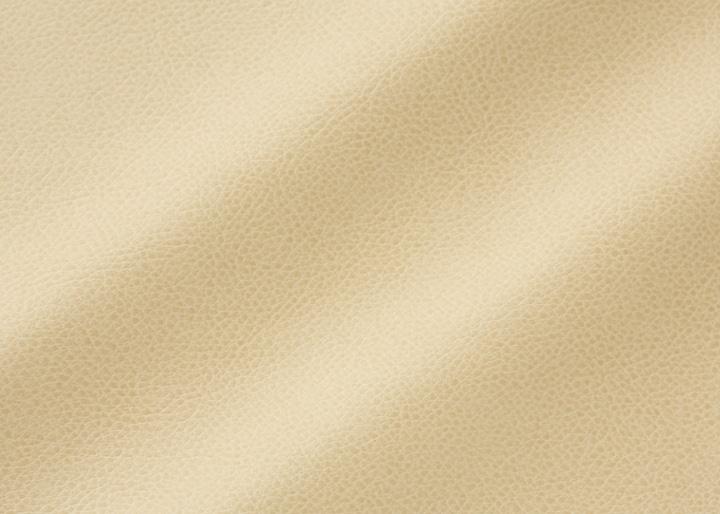 カフウ・ダイニングチェア (ラタン) カバー (ソフトレザー):画像3
