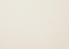 [2枚1組]コオウ・ダイニングチェアカバー (CNオフホワイト)