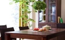 No.83 爽やかな緑のきらめき、ガーデングリーン・スタイル:画像8