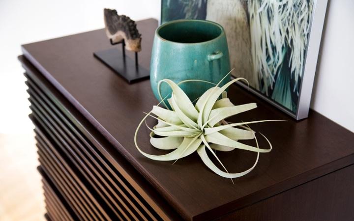 No.83 爽やかな緑のきらめき、ガーデングリーン・スタイル:画像11