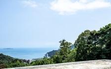 No.197 熱海の絶景を望める別荘のインテリアコーディネート:画像15